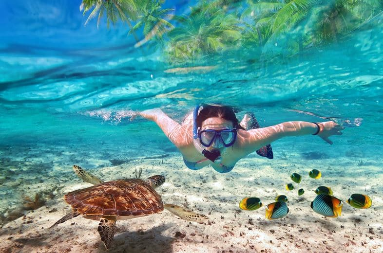 Top 5 Places To Snorkel In Cancun