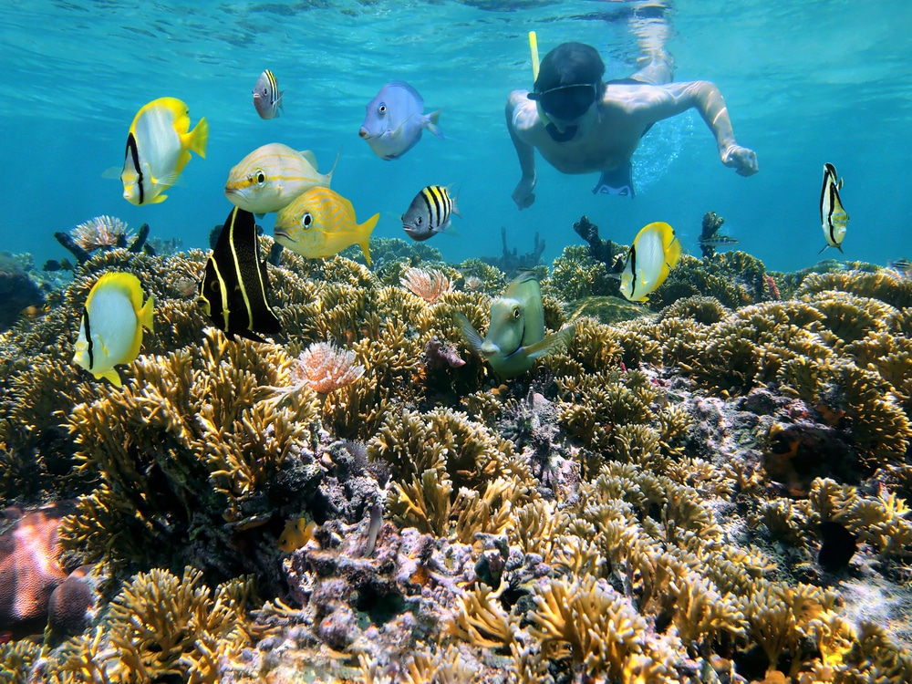 Epic-Water-Toys-4-options-to-live-a-summer-adventure-in-Cancun-Snorkel